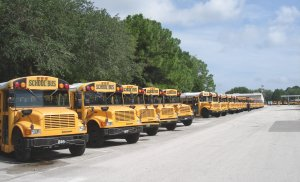 Pasco County school buses
