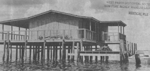 Mike Olson's stilt house